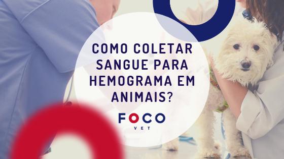 Coleta_sangue_animais