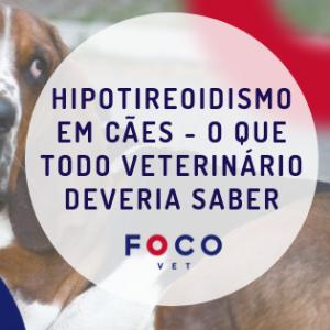 Cão com hipotireoidismo